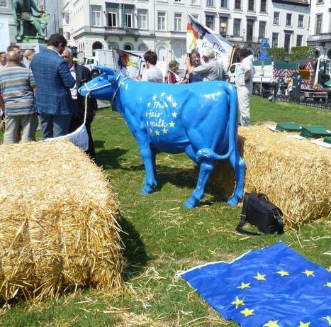 Lait: une étude suisse met l'Europe en garde | TL - Europe | Scoop.it