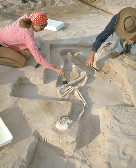 On this day: Mungo Man fossil found | Archaeology Tools | Scoop.it