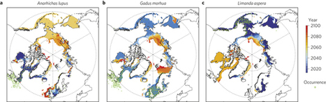 Arctic warming will promote Atlantic-Pacific fish interchange : Nature Climate Change : Nature Publishing Group | Climate Change and the Oceans | Scoop.it