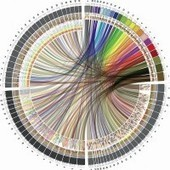 Circle of Life: The Beautiful New Way to Visualize Biological Data - Wired | Databases & Softwares | Scoop.it