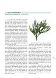Textos para descargar | Recursos de Botánica para Secundaria | Scoop.it