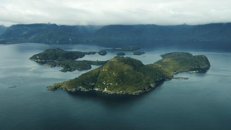 Nueva Área Marina Protegida en las costas de Chile   Medio ambiente   Scoop.it