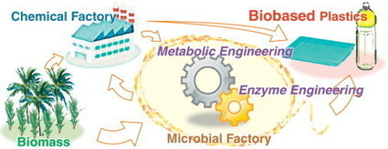 Enzyme and metabolic engineering for the production of novel biopolymers: crossover of biological and chemical processes | SynBioFromLeukipposInstitute | Scoop.it