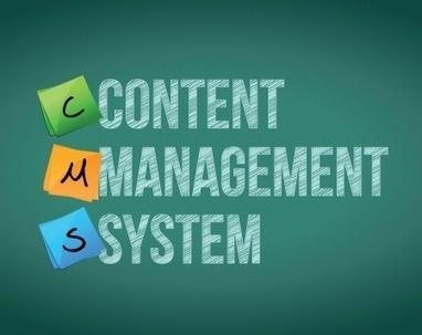 CMS development, the greatest platform bringing businesses to the next level | Web Development | Scoop.it