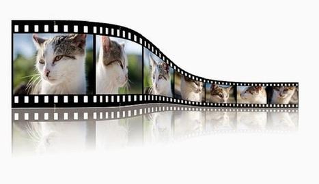 Una lista con 20 alternativas a YouTube - Nerdilandia   Educacion, ecologia y TIC   Scoop.it