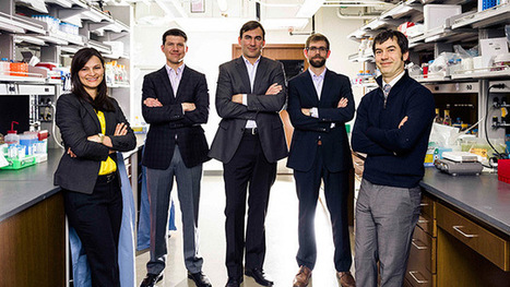 Synthetic biologists break new ground in medicine, energy | leapmind | Scoop.it