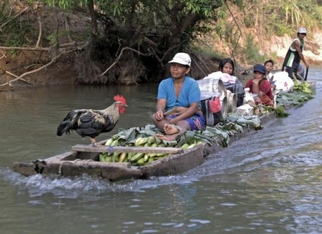 """Central America forest tribes fight drug smuggling """"tsunami"""" - Thomson Reuters Foundation 