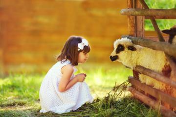La communication animale- Mademoiselle Bien-être | ésotérisme | Scoop.it