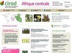 En ligne : le site du Cirad en Afrique centrale - CIRAD | International aid trends from a Belgian perspective | Scoop.it