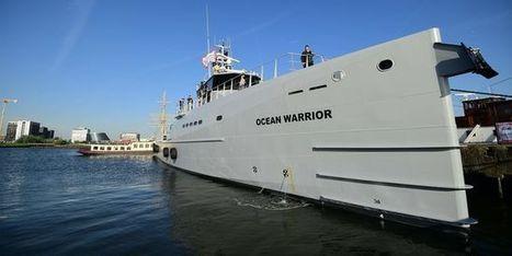 «Ocean-Warrior», nouvelle arme contre les chasseurs de baleines | Chronique d'un pays où il ne se passe rien... ou presque ! | Scoop.it
