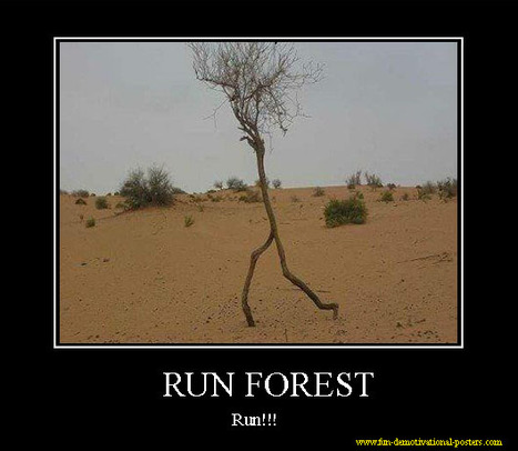 Run forest | fun demotivational posters | Strange Things... | Scoop.it