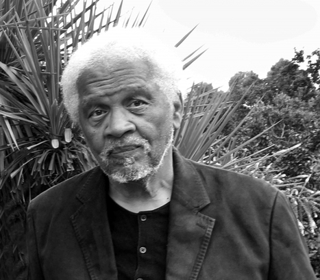 Paris Review - The Art of Poetry No. 100, Ishmael Reed | PLASTICITIES  « Between matter and form, between experience and consciousness, the active plasticity of the world » | Scoop.it