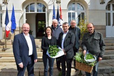 Muguet: une perte estimée entre 20 et 30% de la récolte - L'Avenir agricole   Agriculture en Pays de la Loire   Scoop.it