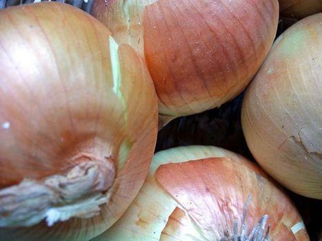 ¿Conoces los alimentos más bajos en pesticidas? | Agroindustria Sostenible | Scoop.it