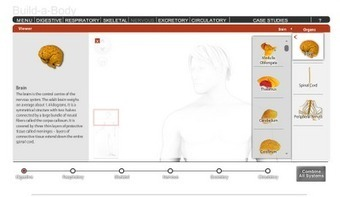Free Technology for Teachers: Interactive Build a Body Lesson | EDUcational Chatter | Scoop.it