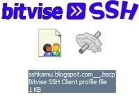 Bitvise SSH Client 4.63 Full 2014 Free Download | SSH Gratis | Free Account SSH | Scoop.it