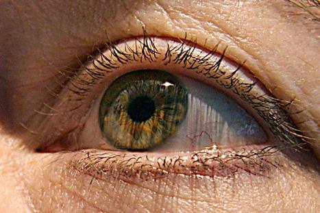 Nuevo tratamiento que utiliza células madre podría curar la ceguera | Brújula Analógica-Digital. | Scoop.it