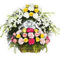 Send Flowers to India - Flowers Delivery in India, Flower Delivery, Gifts to India | send flowers to delhi | Scoop.it
