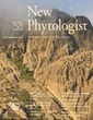 Combined phosphate and nitrogen limitation generates a nutrient stress transcriptome favorable for arbuscular mycorrhizal symbiosis in Medicago truncatula - Bonneau - 2013 - New Phytologist - Wiley... | Redox signalling and Plant Symbioses | Scoop.it