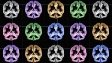 Scientists locate the brain's happiness centre | Psicología y Terapia.     Psychology & Therapy | Scoop.it