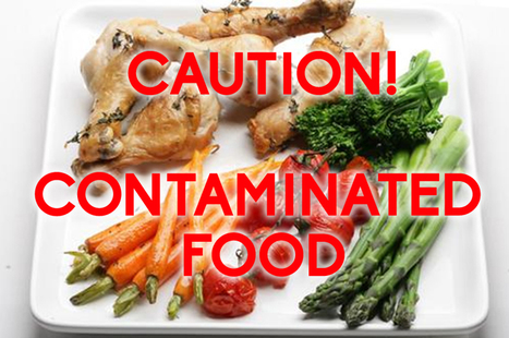 Causes Of Food Contamination | VRNeighbours | Foods & Drinks | Scoop.it
