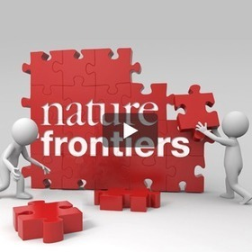Frontiers | Peer Reviewed Articles - Open Access Journals | Open Access Resources for Researchers | Scoop.it