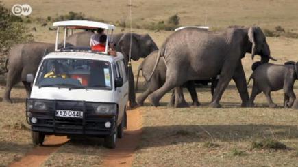Kenia: Tourismus erholt sich | Afrika | Scoop.it