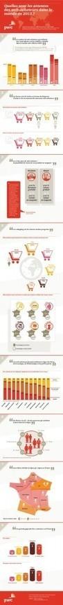 [Infographie] Faire ses achats en ligne: les tendances des web-acheteurs dans le monde en 2013 - Neocamino | Le e-commerce, un confort pour le consommateur ? | Scoop.it