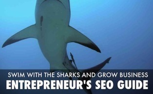 The Ultimate Entrepreneur's SEO Checklist for 2014 | SEO Tips, Advice, Help | Scoop.it