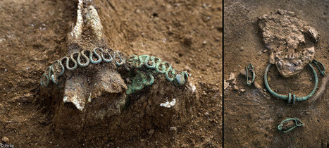 La Tène warriors unearthed in France : Archaeology News from Past Horizons | Archaeology News | Scoop.it