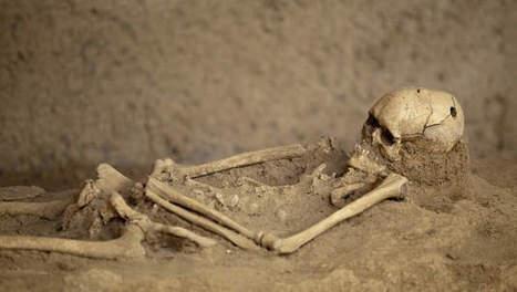 Versneden skeletten ontdekt in massagraf van de Maya's | goossens levi geschiedenis | Scoop.it