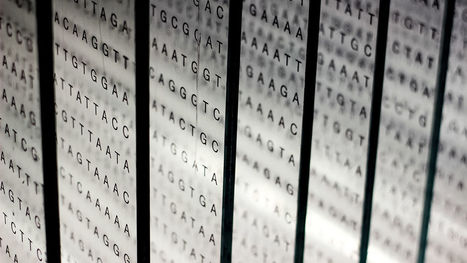 Q&A: Crowdsourced personal genomes database slowly gains momentum | DNA and RNA Research | Scoop.it