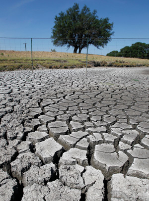 Dust bowl looms if US Southwest drought plans fail - environment - 01 November 2011 - New Scientist | Food issues | Scoop.it