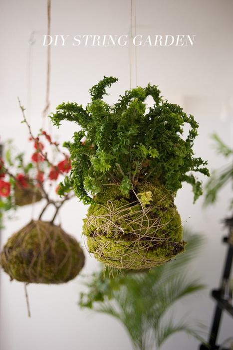 DIY String Garden | Green Things | Scoop.it