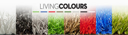 Artificial Lawn India Services | Artificial Grass India | Scoop.it