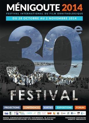 En direct du Festival International du film ornithologique de Ménigoute   LA Ciné News   Scoop.it