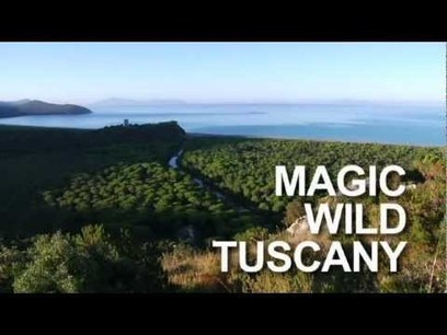 Itinerari in Maremma Toscana - YouTube | Maremma che | Scoop.it