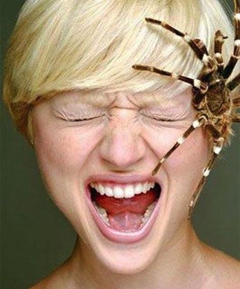 Tratamiento trastorno de fobia específica - Psicóloga en Las Palmas | Psicologia | Scoop.it