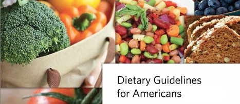 My Testimony Before the 2015 Dietary Guidelines Committee   NutritionFacts.org   Veganism   Scoop.it