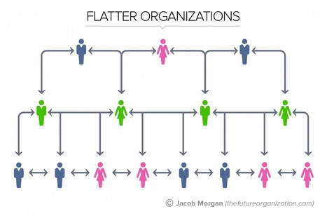 The 5 Types Of Organizational Structures: Part 2, 'Flatter' Organizations | Organisation Development | Scoop.it