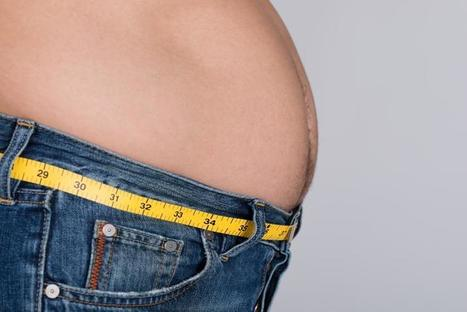 Your Muffin Top Could Turn Lethal: Large Waist To Hip Ratio Linked To Sudden ... - Medical Daily | weight loss program reviews | Scoop.it