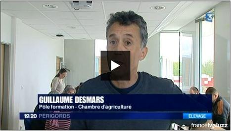 JT local 19/20 Périgords - France 3 Aquitaine | Agriculture en Dordogne | Scoop.it