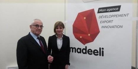 La nouvelle agence de développement économique de Midi-Pyrénées s'appelle Madeeli | La lettre de Toulouse | Scoop.it