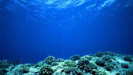 Les fonds océaniques au péril d'une exploitation sans frein (podcast) | Toxique, soyons vigilant ! | Scoop.it