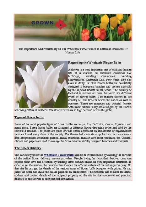 The importance and availability of the wholesale flower bulbs in different occasions of human life - PDF | Flower Bulbs | Scoop.it