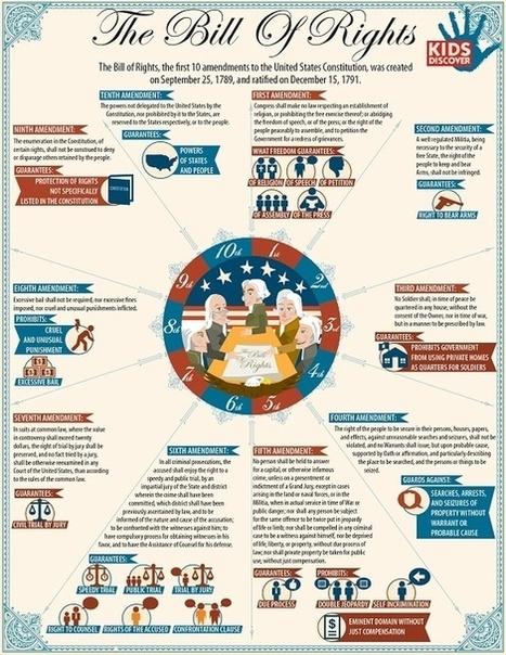 Bill of Rights Infographic | School | Scoop.it