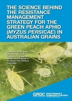 The Science Behind The Resistance Management for the Green Peach Aphid in Australia Grains - Grains Research & Development Corporation   Beet western yellows virus   Scoop.it