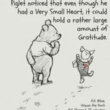 Week #13 MKMMA Gratitude, Gifting, and Growling | Focus Society Mastermind | Scoop.it