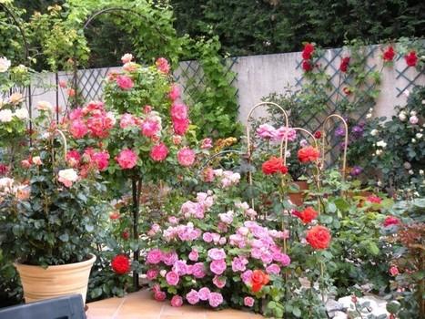 Aménagez votre jardin comme un pro | Le Paysagiste | jardin | Scoop.it