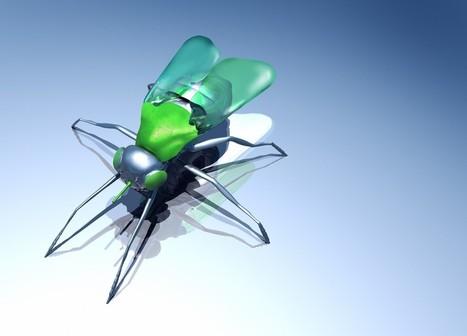 Drones insectes, super-oreilles, cape d'invisibilité... quand la science s'inspire de la nature | arslog | Scoop.it